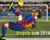 Bicycle Kick 2014